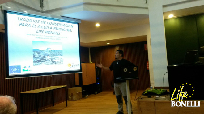Juanjo Iglesias of GREFA explaining the Life Bonelli Project to the participants of the seminar.